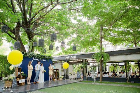 Mellow Garden Wine & Dine Restaurant