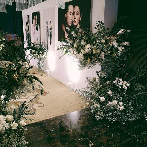 Aoi Studio
