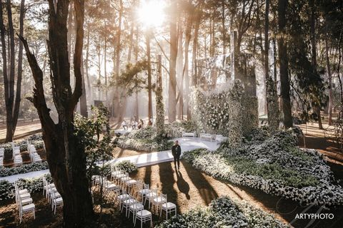 Rainforest The Wedding